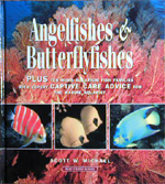 Angelfishes & Butterflyfishes by Scott Michael