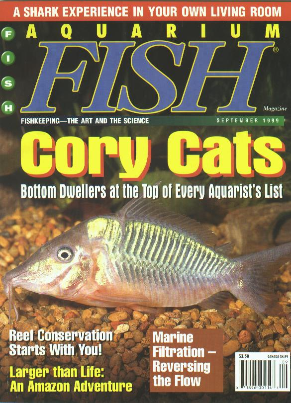 What you should know about keeping marine specimens for Tropical fish magazine