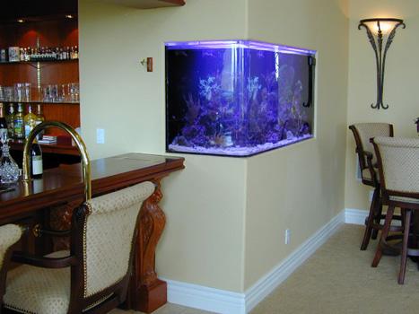 Ideas to enclose laundry room photos inside home for Aquarium corner decoration