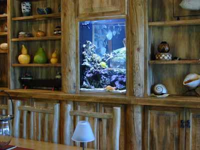75 Gallon Reef Tank Aquarium Design Marine Aquariums And C Stand Canopy Filter System