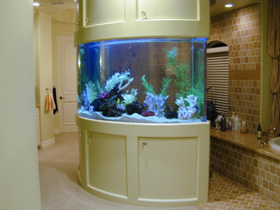 270 Gallon 39 Curved 39 Marine Fish Tank Aquarium Design