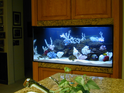 176 Gallon Bent Corner Tank Aquarium Design Marine