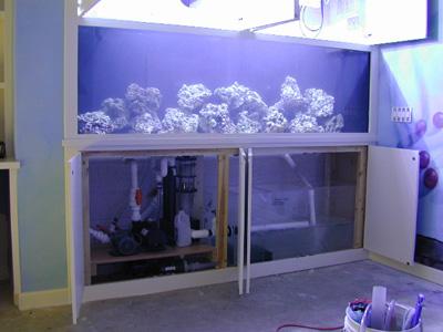 All incluve vaca reef tankaquarium designmarine aquariums for Fish tank with built in filter