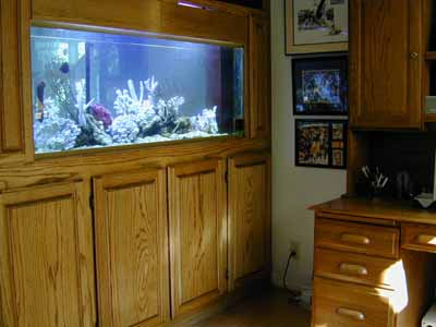 100 Gallon Marine Fish Tank Aquarium Design Marine Aquariums and Coral Reef Aquarium Tank Stand Canopy and Aquarium Filter System : aquarium canopy design - memphite.com