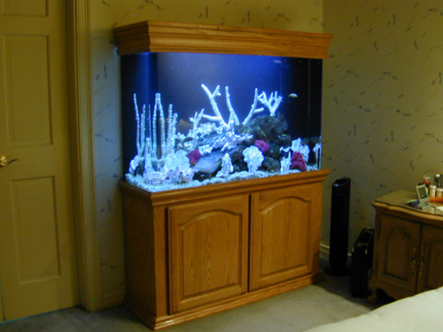 Glass Aquarium Canopies and Accessories at AquariumGuys.com